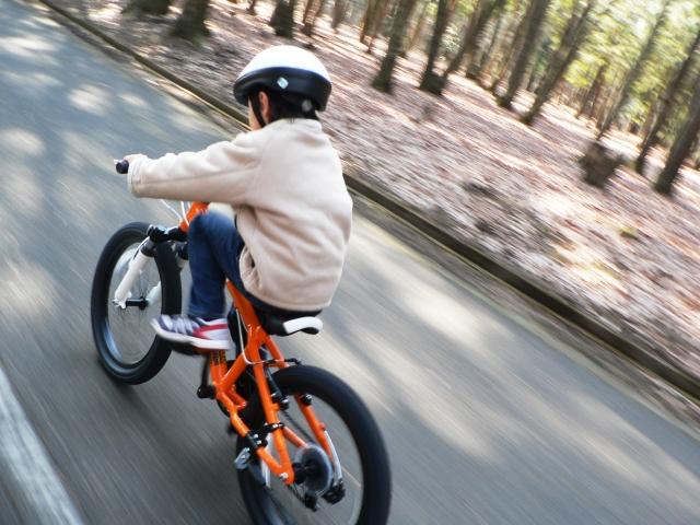 東方絆まつりの日ですが富士を自転車で走るために東北から離れます